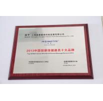 2013中国按摩保健器具十大品牌